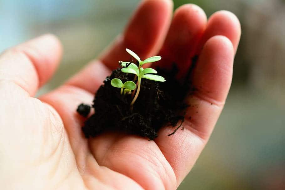 Grow as a Good Developer